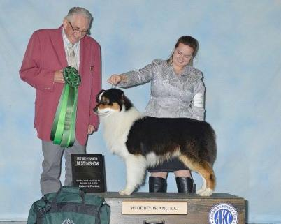 Odin wins Best in show bred by!