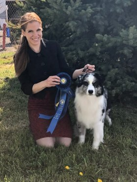 Prada wins the group in Kalamath Falls Show! 2nd time out as a special!