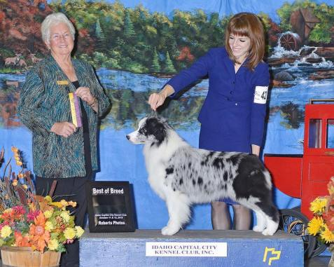 Prada wins the breed in Boise!